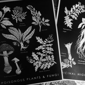 Poisonous Plants & Fungi Poster