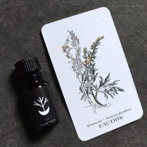 Absinthium Perfume