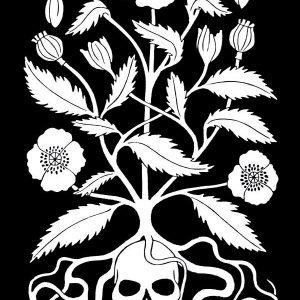 Opium Poppy Print
