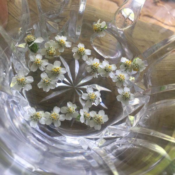 yarrow flower essence